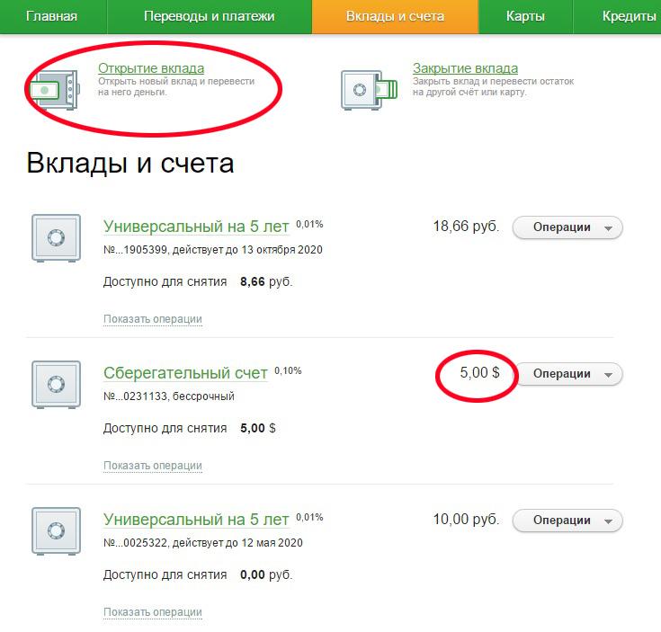 Изображение - Как открыть валютный счет в банке физическому лицу kak-otkryt-valyutnyj-schet-v-banke-fizicheskomu-litsu.3